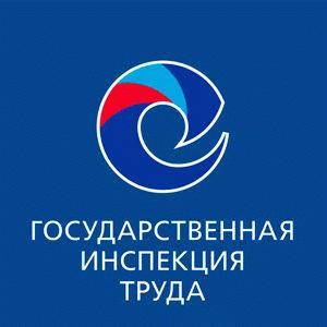 Официальный сайт государственной трудовой инспекции и её адрес в Москве