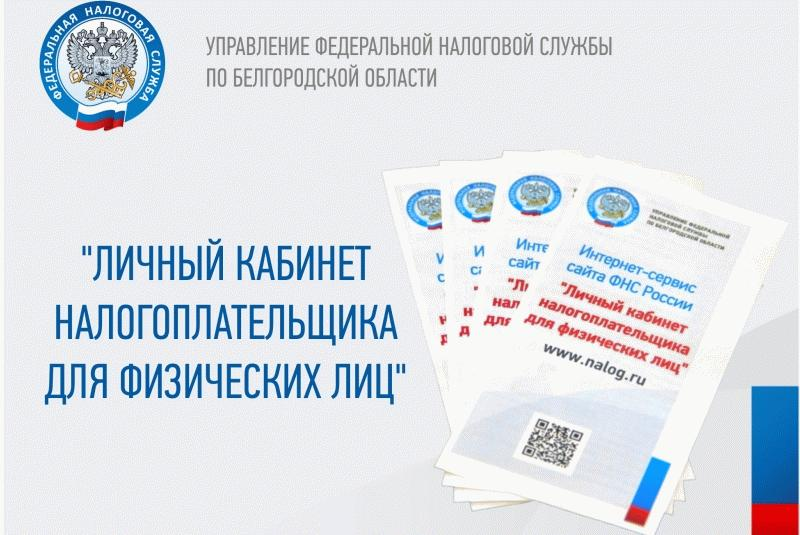 Маркетинговый материал с официального сайта ФНС