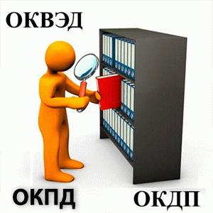 Как по ИНН узнать онлайн ОКПД и ОКДП