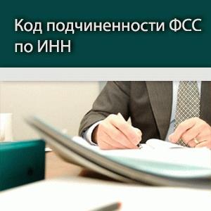 Как узнать код подчиненности ФСС по ИНН