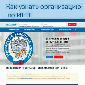 Как узнать организацию по ИНН и получить сведения на сайте налоговой