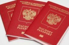 Как узнать о готовности загранпаспорта через Госуслуги и каков порядок получения