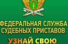 Служба судебных приставов: узнать задолженность по Москве и Московской области