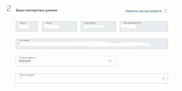 Ввод сведений о гражданском паспорте РФ.