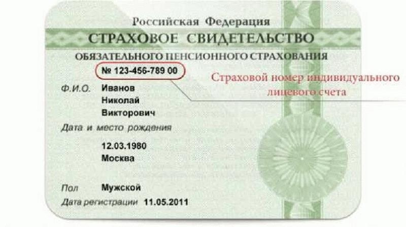 Важный документ, необходимый каждому россиянину