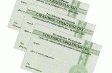 Замена СНИЛС через МФЦ – документы и порядок действий