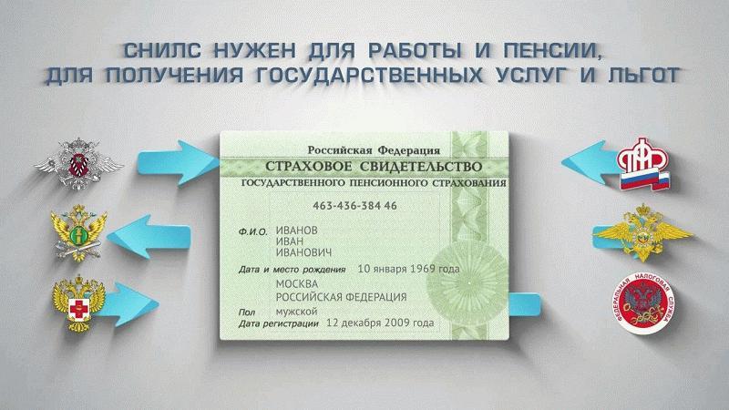 СНИЛС явлется документом, объединяющим разные государственные учреждения и ведомства