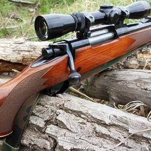 Получение лицензии на нарезное оружие через «Госуслуги»