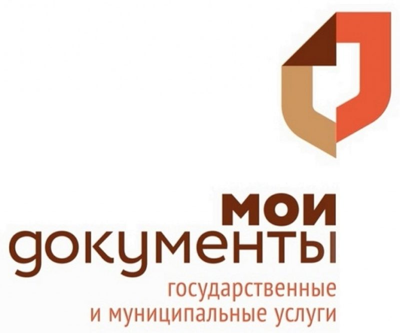 Логотип госучрждения «Мои документы»