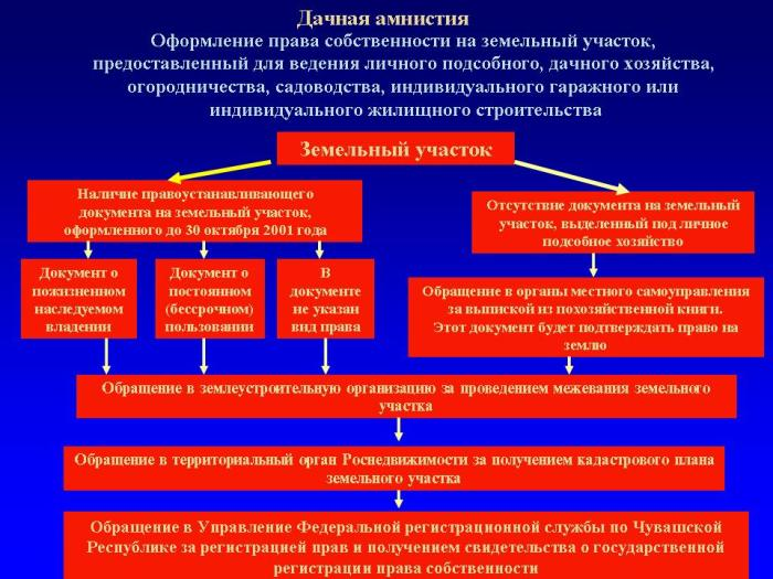 Документы по дачной амнистии.