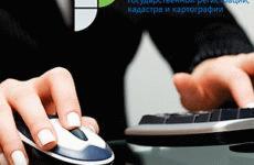 Как узнать в Росреестре статус заявления онлайн