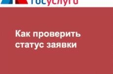 Государственные и муниципальные услуги СПб: как проверить статус заявки