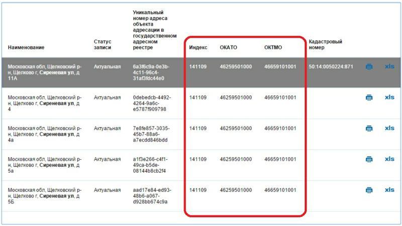Результат поиска ОКТМО по адресу