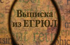 Как найти и получить на «налог.ру» выписку из ЕГРЮЛ по ИНН
