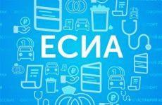 Как узнать на сайте ФГИС ЕРП про проверки после входа в систему через ЕСИА