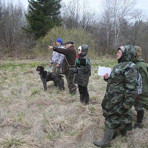 Путевка на охоту через «Госуслуги» или МФЦ